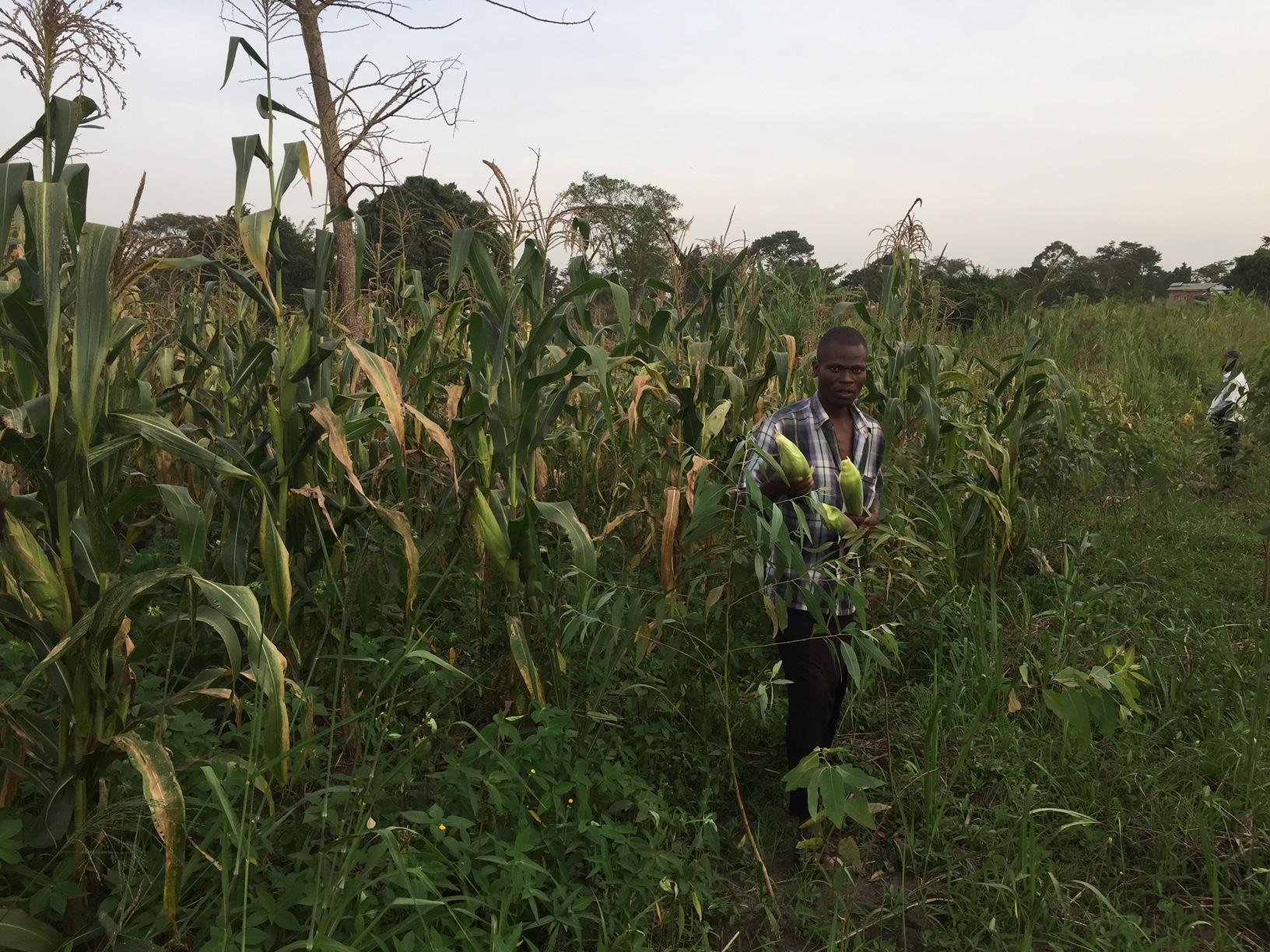 Farmer in Uganda